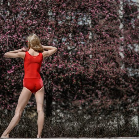 Leotard red with tulle back